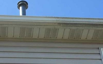 Prevent Black Streaks on Your Gutters