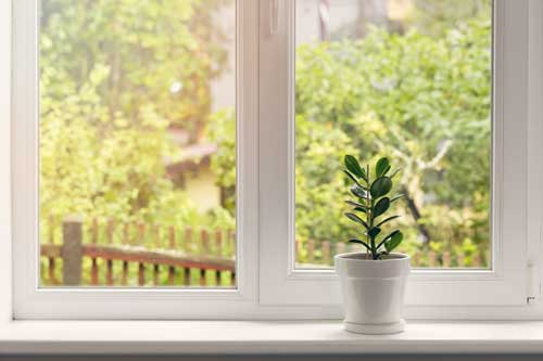 Curb Appeal Pros offers exterior window cleaning services in St. Louis