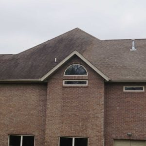 A roof cleaned by Curb Appeal Pros with half clean and half with mold